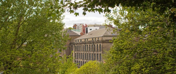 Photo of 36 Lime Street and the Cluny through the trees